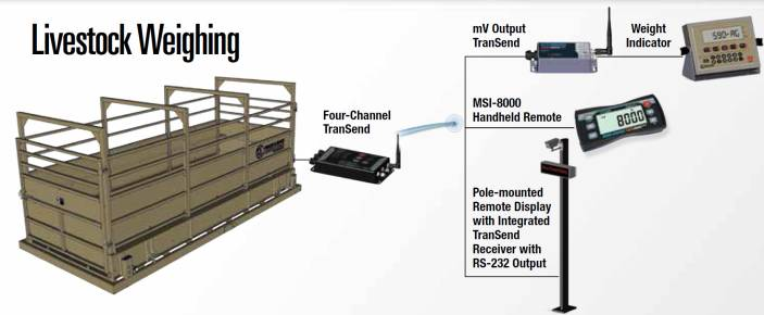 example of livestock weighing chamber with wireless function