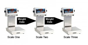 2200CW check weigh scale