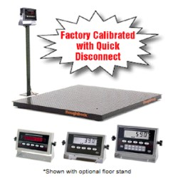 Rice Lake Roughdeck Rough-n-Ready Floor Scale System