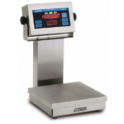 doran-4300-stainless-steel-checkweigh-scale.jpg