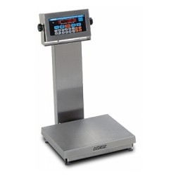 Doran APS2200 Stainless Steel Bench Scale