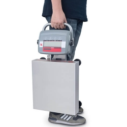 portable scale with carry handle
