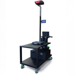 rice-lake-idimension-mobile-cart-dim-weight-scale