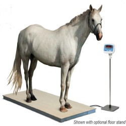 salter brecknell ps3000 horse scale