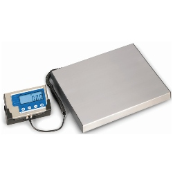Sportsman fishing scale