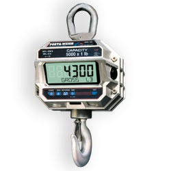 msi-4300-port-a-weigh-plus-crane-scale.jpg