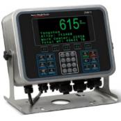 avery-weigh-tronix-zm615-weight-indicator