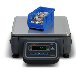 weigh-tronix-zk830-hi-resolution-counting-scale