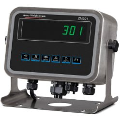 weigh-tronix-zm301-weight-readout.jpg