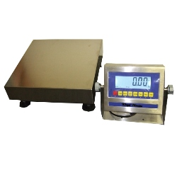 weigh master scale